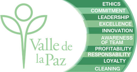 valores-valle-paz-eng